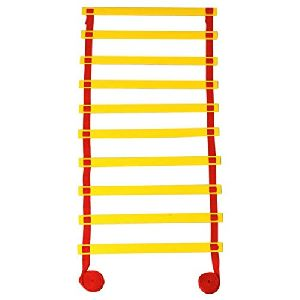 Anti Skid Ladder