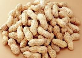 Shelled Peanut