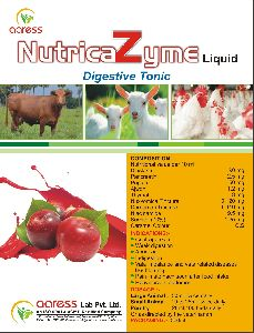 Nutrica Zyme Digestive Tonic Supplement