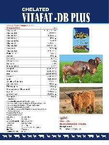 Vita Fat DB Plus