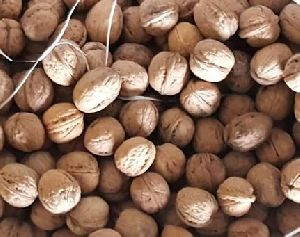 Walnuts Image 01