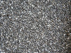 Chia Seeds 01