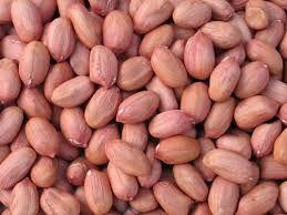 Groundnuts Kernels