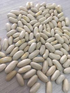 Naveli French Bean Seeds