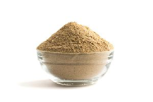 Organic Amla Powder