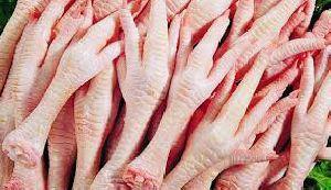 Frozen Chicken Paws 04