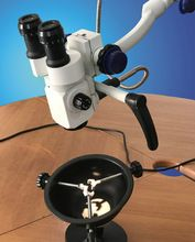 ENT Examination and Surgical Microscope