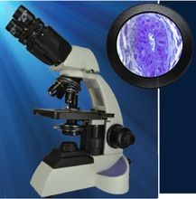 Pathology Microscope