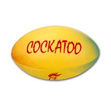 official match ball rugby