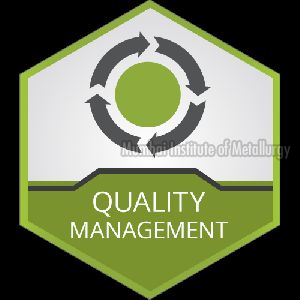 Management System Services