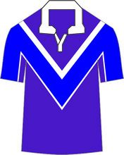 polyester Cricket Uniforms