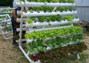 Hydroponic System Installation Services