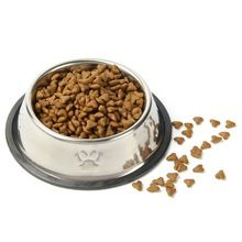 Steel Pet Feeding Embossed Bowl