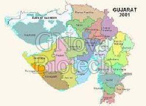 Pharma Franchise in Panch Mahal
