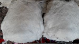 Rabbit Fur 10