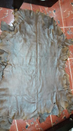 Tanned Sheep Leather 01