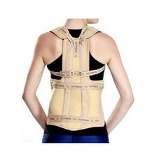 Hot Selling Taylor's Brace Support Belt