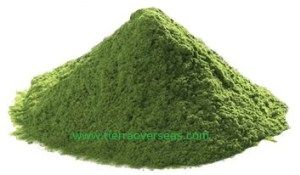 Natural Spinach Powder