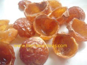 Soap Nut Sapindus Mukorossi