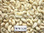 W320 Cashew Nut