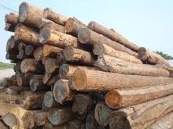 SYP Wood Logs