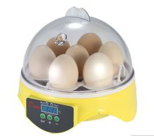 Mini 7 Eggs Poultry Incubator