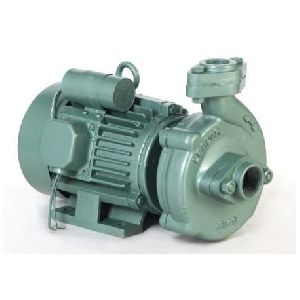 0.5 HP Centrifugal Cast Iron Pump