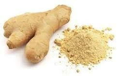 ginger dry extract