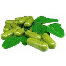 moringa capsules leaf powder