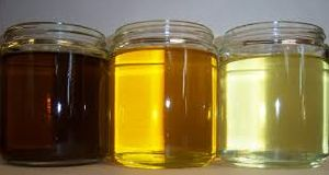 Crude Rapeseed Oil