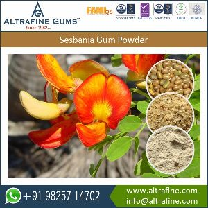 Food Additive Sesbania Gum Powder