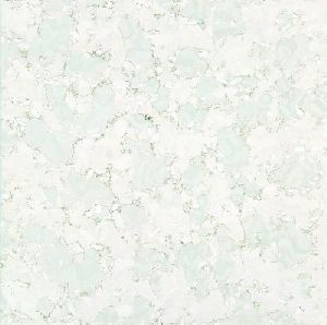 Vitrified Floor Tile 16