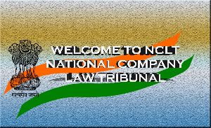 NCLT Case Assisting Services
