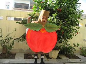 Fruits Fancy Dress