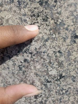 Desert Green Granite Slabs 04