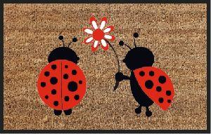 Coir Ladybug Door Mats