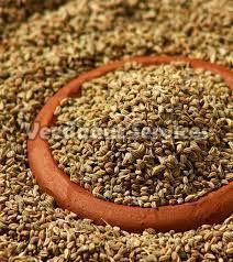 Carom Seed