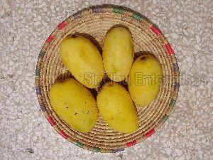 Chusna Mango