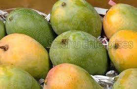 Kalapad Mango
