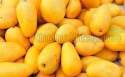Nati Mango