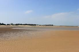 Marine Sand
