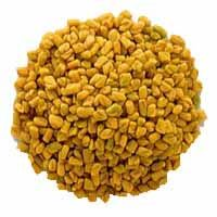 Fenugreek Seeds and Fenugreek Seeds Powder
