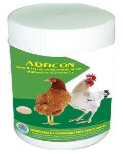 Addcon Antibiotics