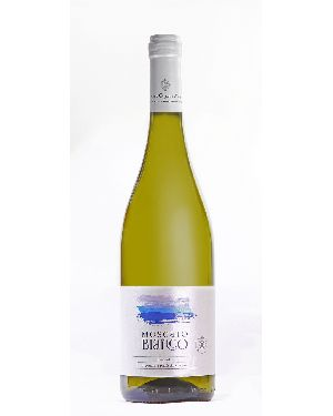 Moscato Bianco Wine