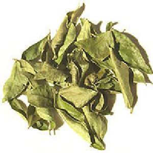Kadi Patta Dried (Curry Tree Leaves)