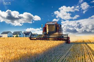 Agriculture Commodities