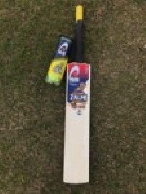Wooden Cricket Bat Ball Set