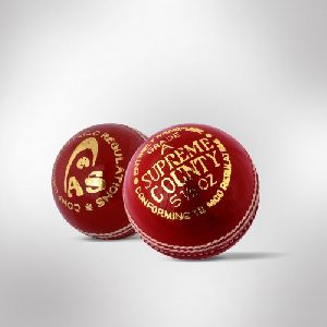 Cricket Leather  Ball 01
