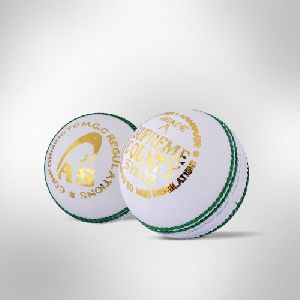 Cricket Leather Ball 02