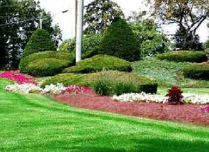 Landscape Development Service